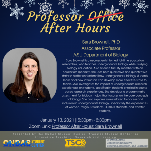 Professor After Hours: Sarah Brownell